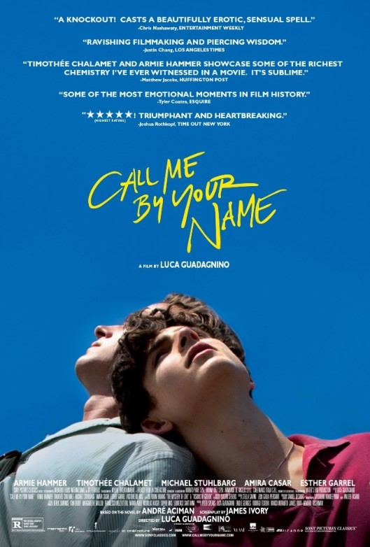 Call Me by Your Name (2017) Bluray Remux 1080p TR EN DTS-HD MA 5 1